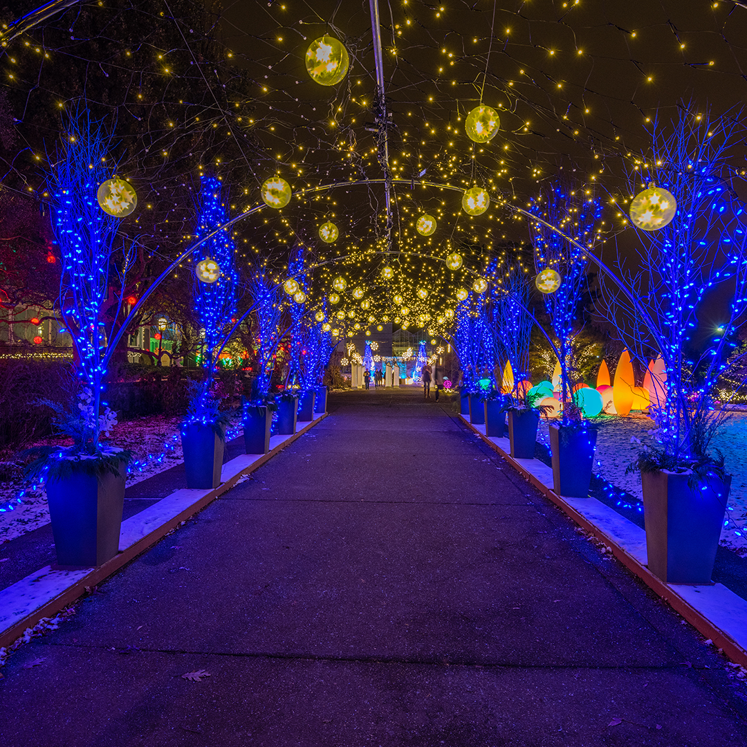 Pittsburgh Christmas Lights 2020 Holiday Magic! Winter Flower Show and Light Garden | Kids Out and